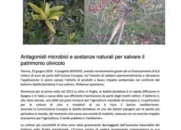 BIOVEXO Iniziale Comunicato Stampa Italiano