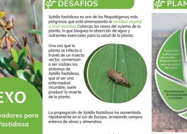 BIOVEXO Flyer Español